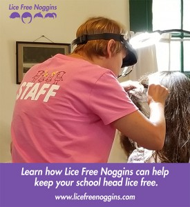 keep-school-head-lice-free