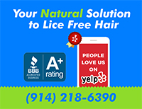 A Plus rated BBB lice service in Westchester